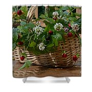 Wild Strawberries And White Clover Shower Curtain