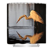Ripple In Time Shower Curtain