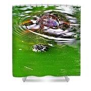 Rippled Green Shower Curtain