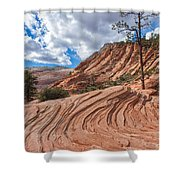 Rippled Rock At Zion National Park Shower Curtain