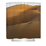 Ripples And Curves Shower Curtain