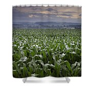 Rise To Meet The Day Shower Curtain
