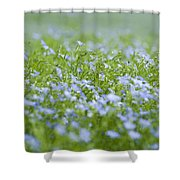 Rising Above The Rest Shower Curtain