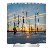 Rising Throught The Sticks Shower Curtain