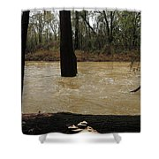 Rising Waters With Timber Shower Curtain