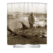 Rissos Dolphin Grampus Griseus Circa 1892 Shower Curtain