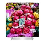 Ritaya Fruit - Mercade Municipal  Shower Curtain
