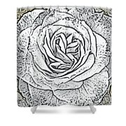 Ritzy Rose With Ink And Taupe Background Shower Curtain