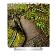 Exploring Columbia River Gorge - Highway 30 Shower Curtain