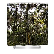 River Bend Park 2 Shower Curtain