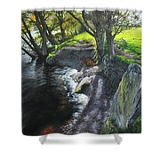 River Dee At Rhug Shower Curtain