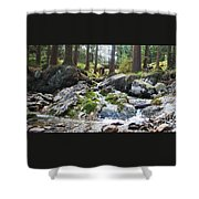 A River Scene In Wicklow, Ireland Shower Curtain