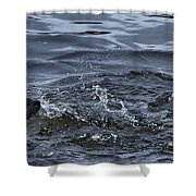 River Otter   #0750 Shower Curtain