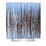 River Reeds Shower Curtain