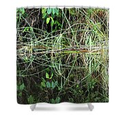 River Reflections 2 Shower Curtain