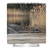 River Rock And Reeds Shower Curtain