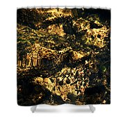 River Rock Reflections Shower Curtain