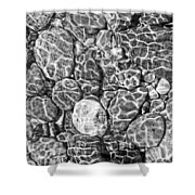 River Rocks In Stream Bed Monochrome Shower Curtain