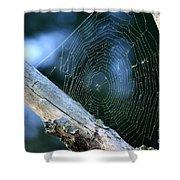 River Spider Web   Shower Curtain