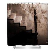 River Steps Shower Curtain