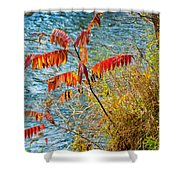 River Sumac Shower Curtain