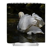 River Swan Shower Curtain