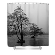 River Trees And Fog Shower Curtain