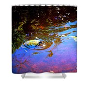 River Turtle Shower Curtain