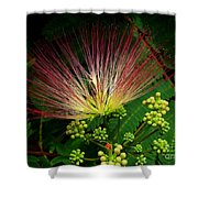 River Wildflowers Shower Curtain