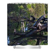 River Wood Shower Curtain