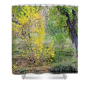 Riverbank Colors Shower Curtain