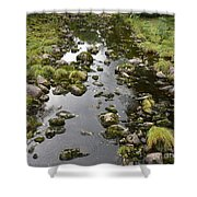 Riverbed  Shower Curtain
