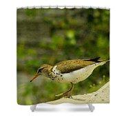 Riverside Bird Shower Curtain