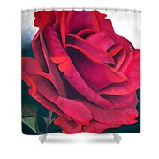 Riverview Shower Curtain