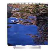 Riverwalk Refletion Shower Curtain
