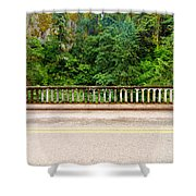 Road And Lush Green Forest Shower Curtain