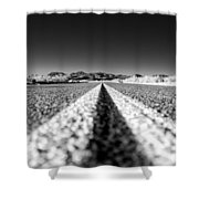 Road In The Desert Shower Curtain