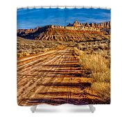 Road Into Solitude Shower Curtain