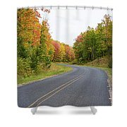 Road Passing Through A Forest, Alger Shower Curtain