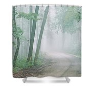 Road Passing Through A Forest, Skyline Shower Curtain