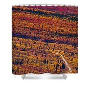Road Through Fall Colored Tundra Shower Curtain