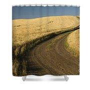 Road Through Wheat Field Shower Curtain