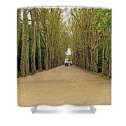 Road To Chenonceau Shower Curtain