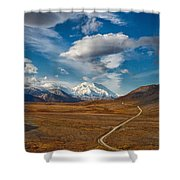 Road To Denali Shower Curtain