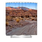 Road To The Badlands Shower Curtain