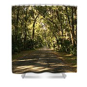 Road To The Enchanted Forest Shower Curtain