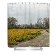 Road To The River Shower Curtain