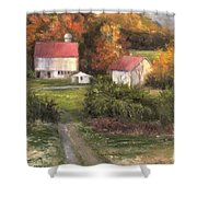 Road To Tranquility Shower Curtain