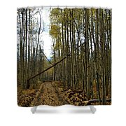 Road To Zion Shower Curtain
