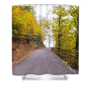 Road With Autumn Trees Shower Curtain